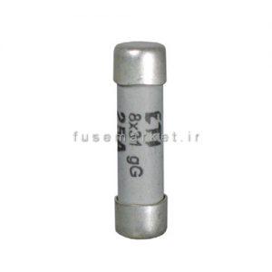 فیوز سیلندری 2A Gg 8 کد 2610001